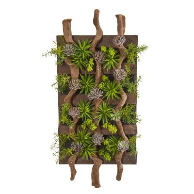 41 in. x 19 in. Mixed Succulent Artificial Living Wall