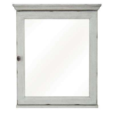 Teagen 25 3/8 in. x 30 in. Surface Mount Mirrored Medicine Cabinet in Vintage Grey