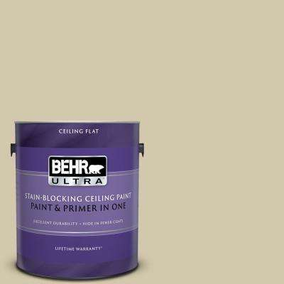 1 gal. #PPU9-12 Prairie House Ceiling Flat Interior Paint and Primer in One
