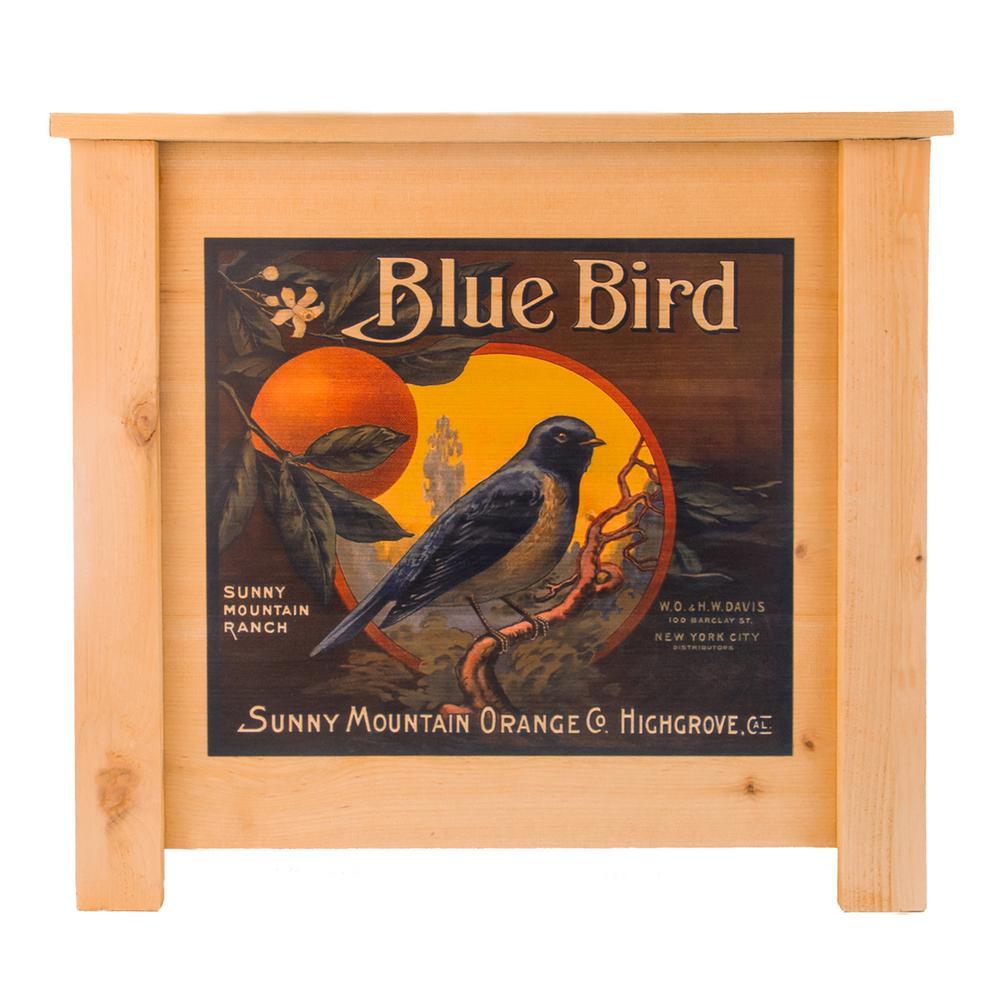 19 in. x 19 in. Deluxe Cedar Planter Box with Blue Bird Art
