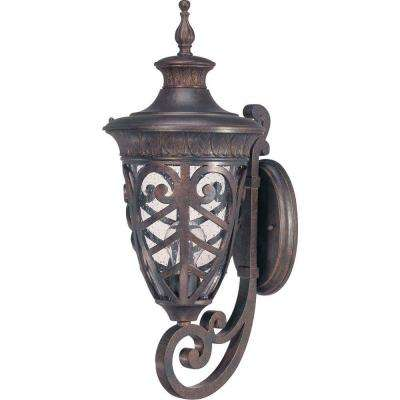 1-Light Outdoor Dark Plum Bronze Incandescent Wall Light
