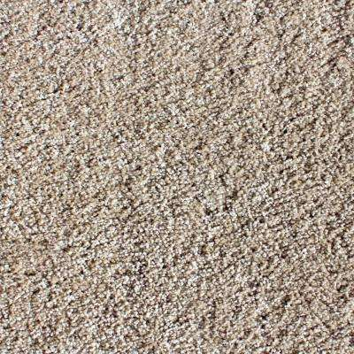Luxe Exquisite Texture 24 in. x 24 in. Residential Carpet Tile (5 Tiles/Case)