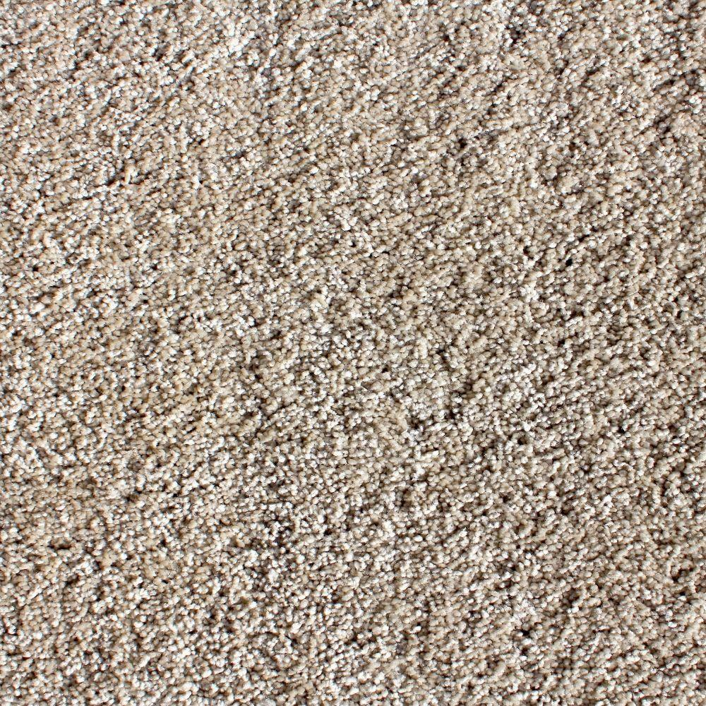 Simply Seamless Luxe Exquisite Texture 24 in. x 24 in. Residential Carpet Tile (5 Tiles/Case)