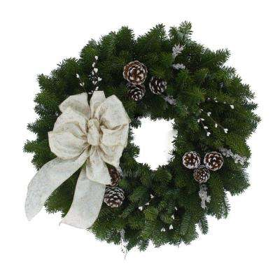 24 in. Balsam Fir Winter Elegance Fresh Wreath : Multiple Ship Weeks Available