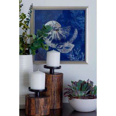 "13 in. x 13 in. ""Seashells and Coral"" Printed Framed Canvas Wall Art"