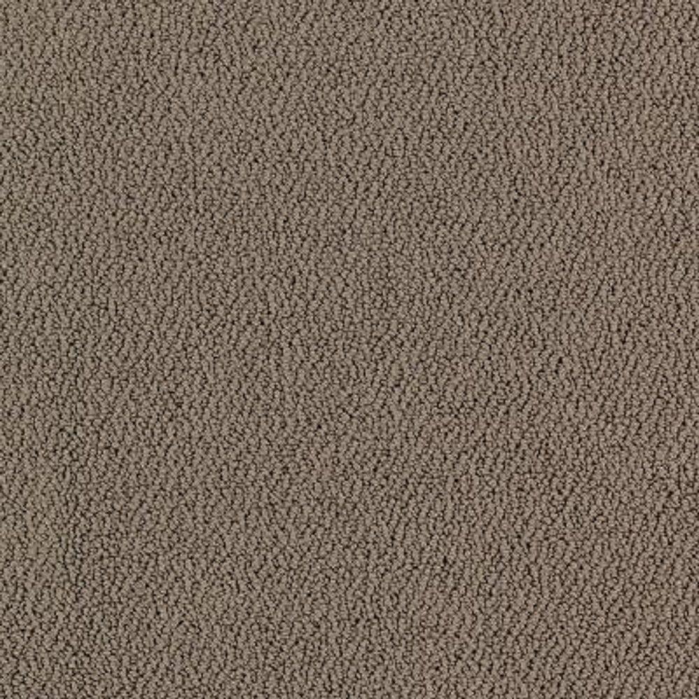 Carpet Sample - Lower Treasure - Color Magnetic Loop 8 in. x 8 in.