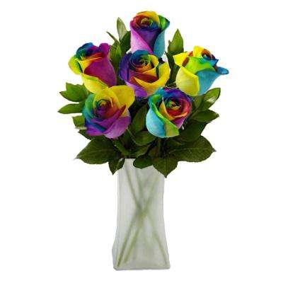 Gorgeous Rainbow Rose Bouquet in Clear Vase (6 Stem) Overnight Shipping Included