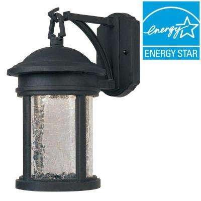 Eagle Collection Oil Rubbed Bronze Outdoor Wall-Mount Lantern