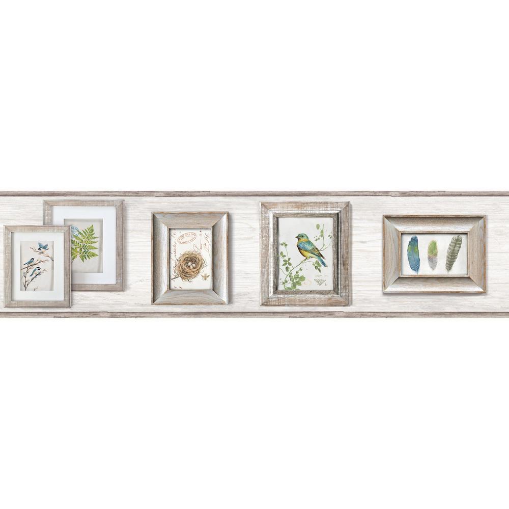 York Wallcoverings Inc Aviary Wallpaper Border Lg1370bd