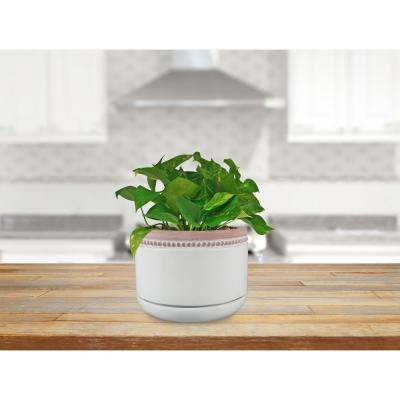 8 in. Ada White Ceramic Planter
