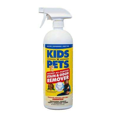 27 oz. Stain and Odor Remover