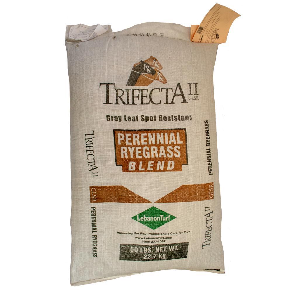 50 lbs. Perennial Ryegrass Blend