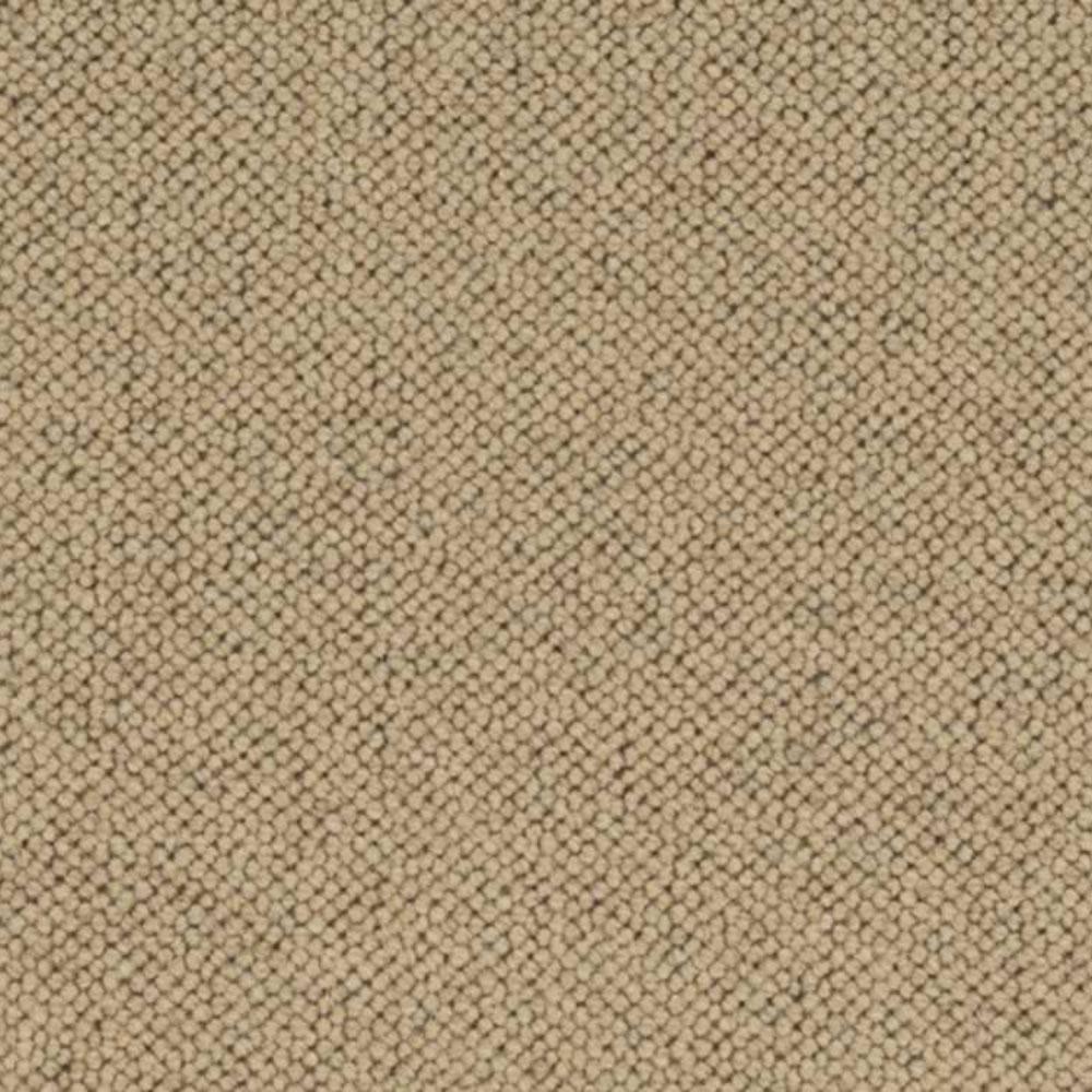 Carpet Sample - Hampton - Color Harvest Loop 8 in. x 8 in.