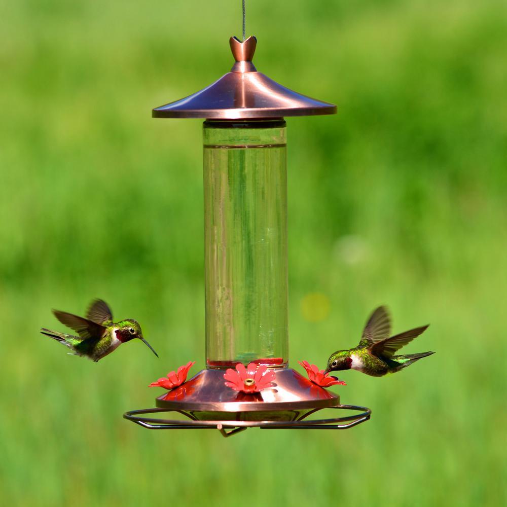 Elegant Glass Copper Hummingbird Feeder - 12 oz. Capacity