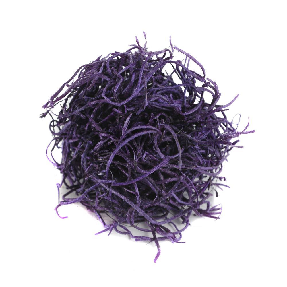 Shop Succulents Spanish Moss, Purple