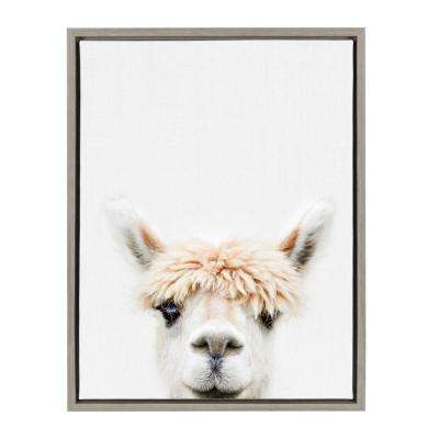 "Sylvie ""Animal Studio Alpaca 3"" by Amy Peterson Framed Canvas Wall Art"