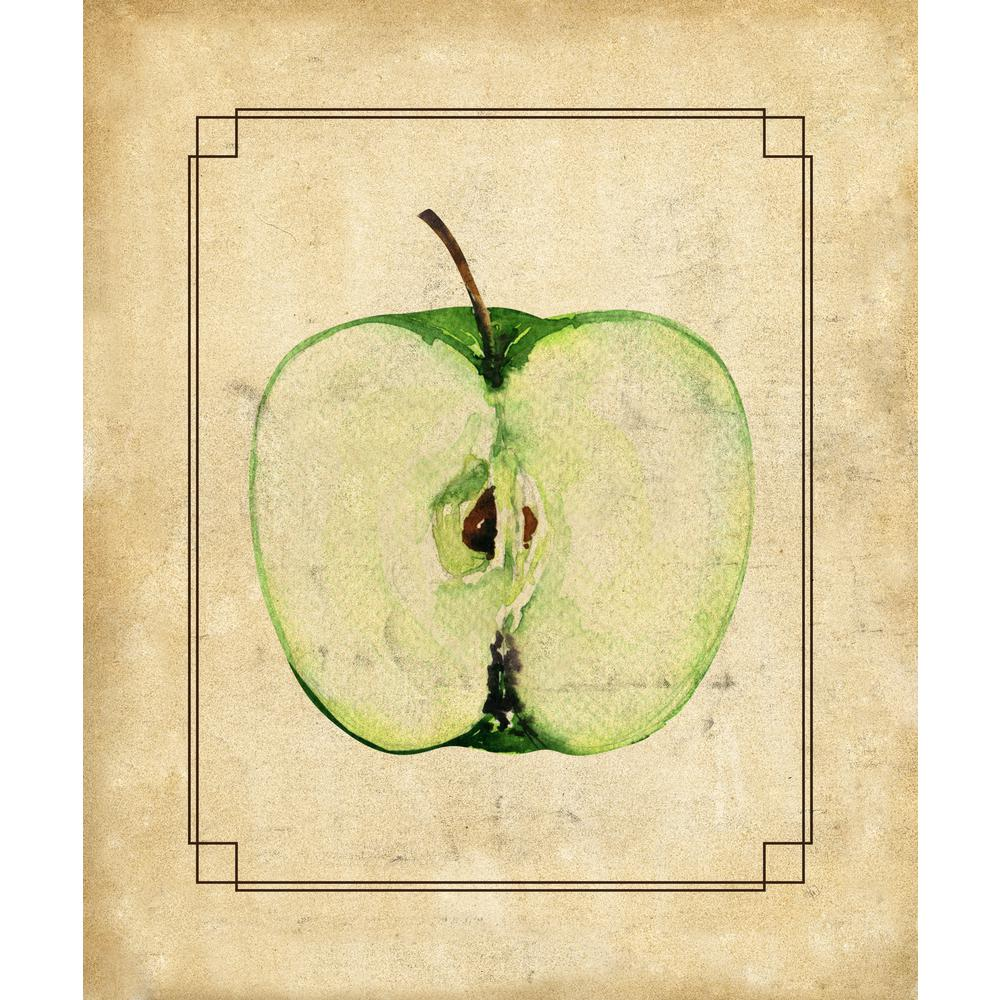 Creative Gallery 16 in. x 20 in. Apple Half Wrapped Canvas Wall Art ...