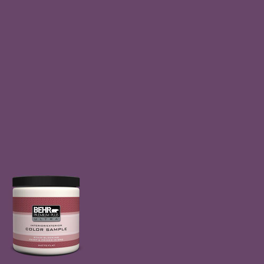 BEHR Premium Plus Ultra 8 oz. #P100-7 Sultana Interior/Exterior Paint Sample
