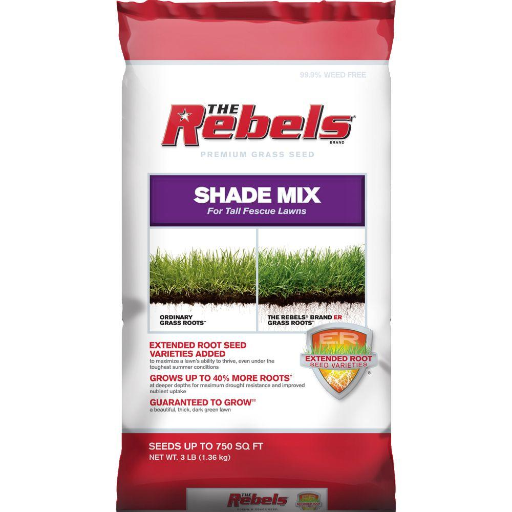Tall Fescue Shade Gr Seed Pcg Mix
