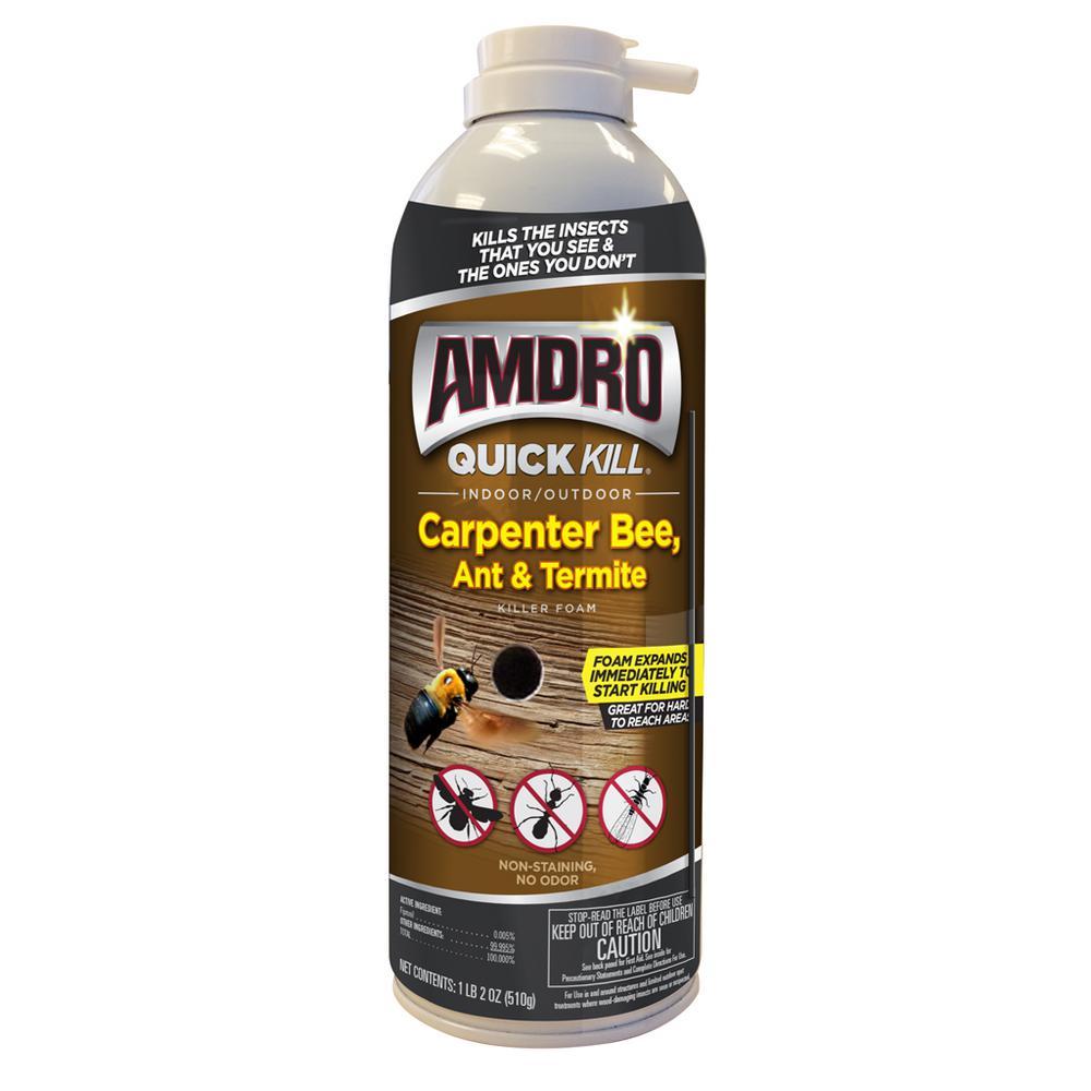 Quick Kill 18 oz. Carpenter Bee Killer Foam