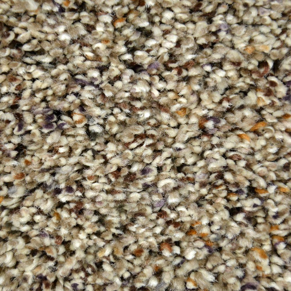 Carpet Sample - Lavish Image II - Color Celina Texture 8 in. x 8 in.