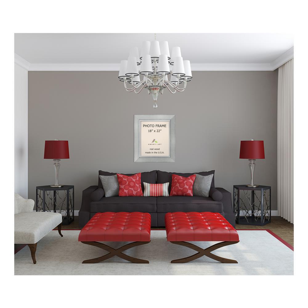 Amanti Art Romano 18 In X 22 In Silver Picture Frame Dsw1385386