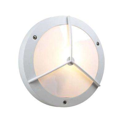 1-Light Outdoor White Wall Sconce with Matte Opal Glass