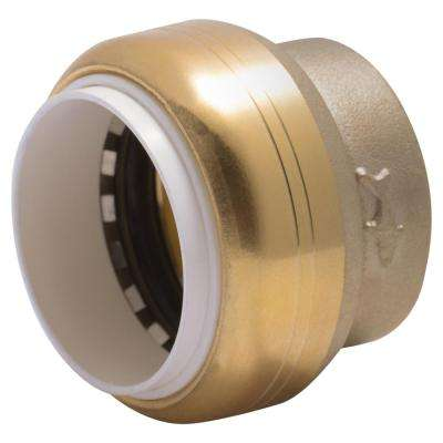 1 in. Push-to-Connect PVC IPS Brass End Stop Fitting