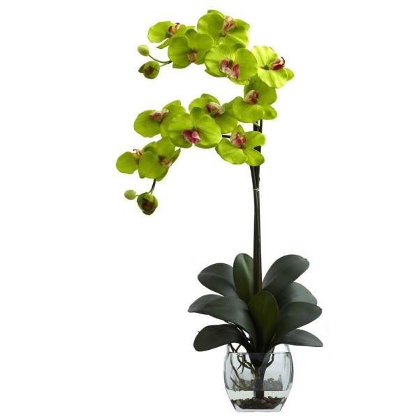Nearly Natural Double Phalaenopsis Orchid with Vase Arrangement in Green 1323-GR