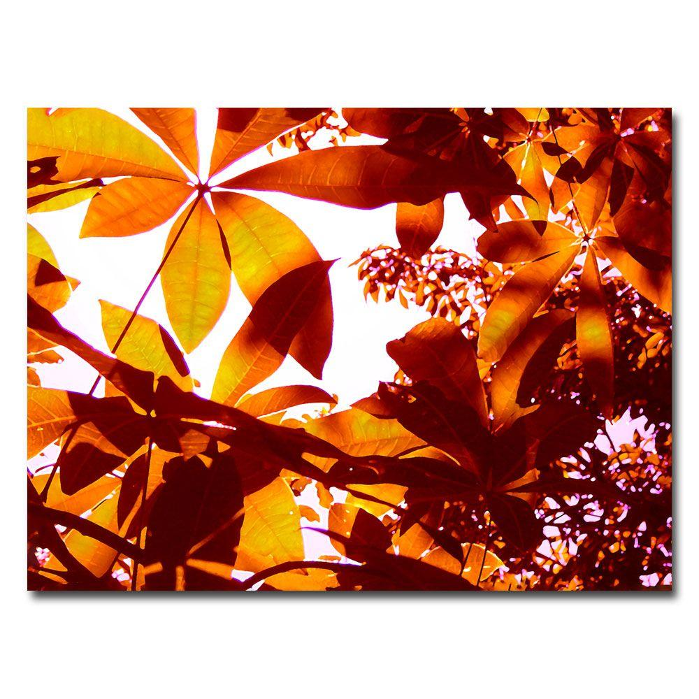 35 in. x 47 in. Light Coming Through Tree Leaves Canvas