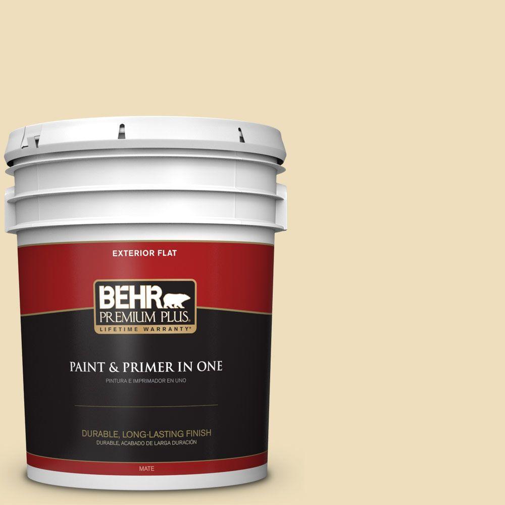 BEHR Premium Plus 5-gal. #380E-3 Satin Souffle Flat Exterior Paint