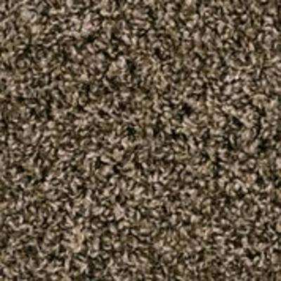 Shelby I - Color Designer's Choice 12 ft. Carpet