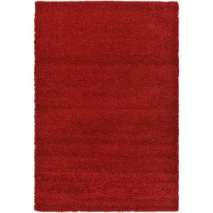 Solid Shag Cherry Red 6 ft. x 9 ft. Area Rug