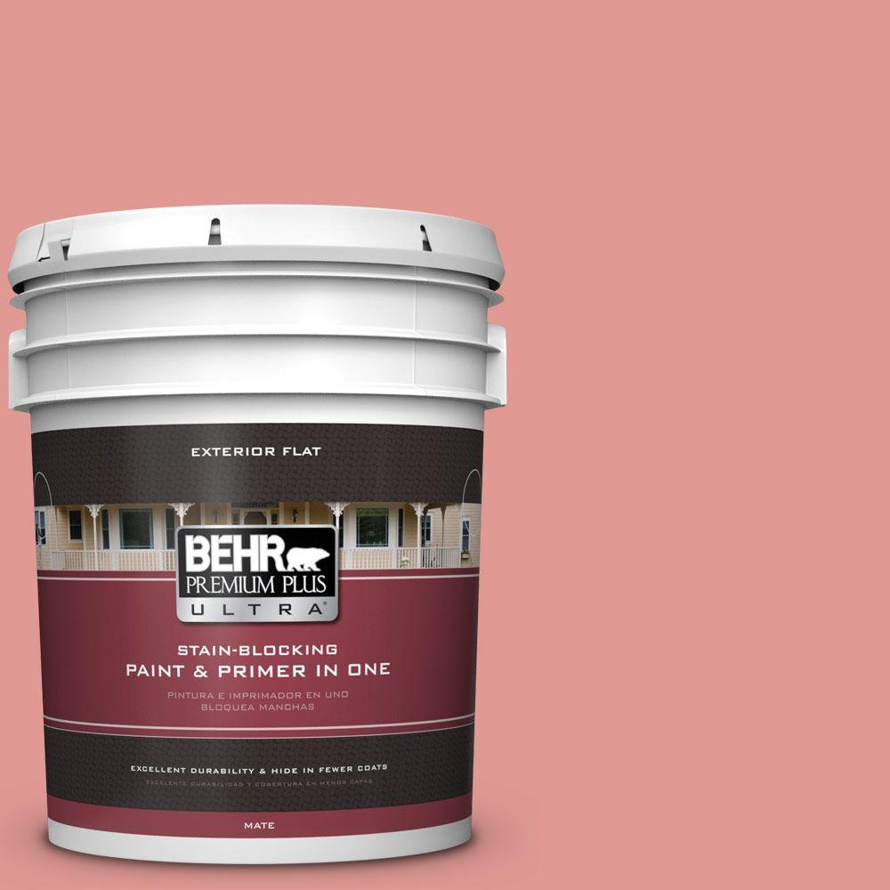 BEHR Premium Plus Ultra 5-gal. #160D-4 Strawberry Rose Flat Exterior Paint