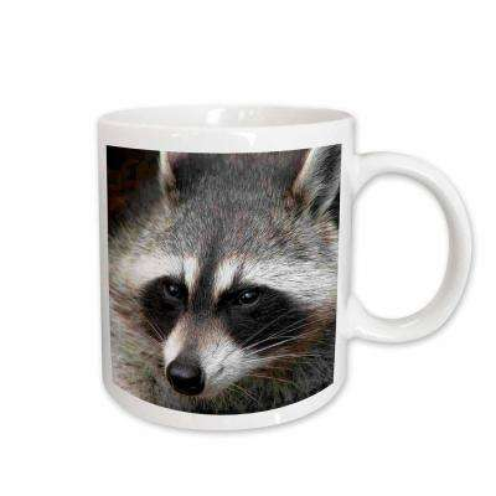 Wild Animals 11 oz. White Ceramic Raccoon Mug