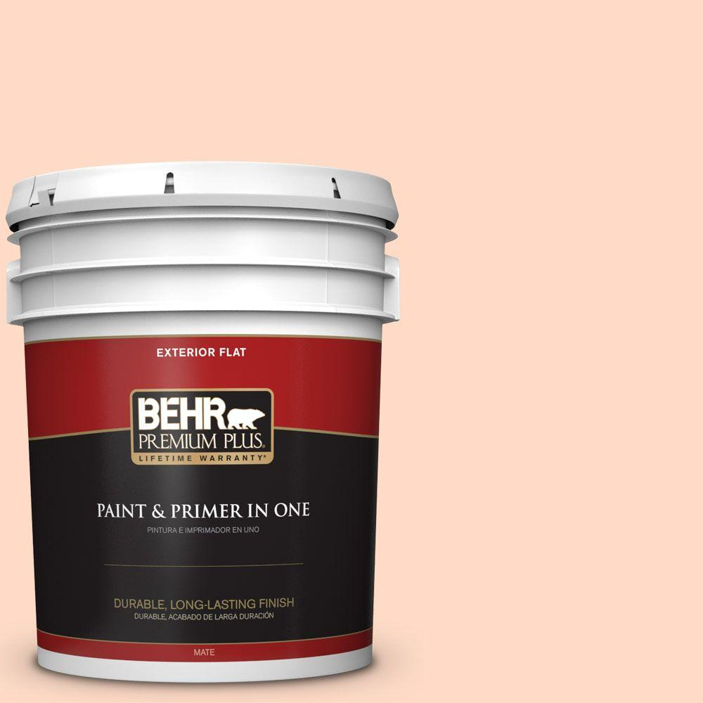 5-gal. #250C-2 Sugared Peach Flat Exterior Paint