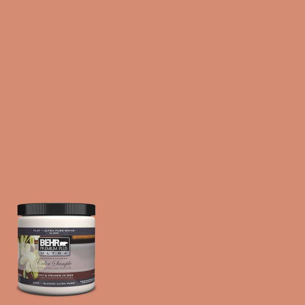 8 oz. #220D-5 Nectarina Matte Interior/Exterior Paint and Primer in One