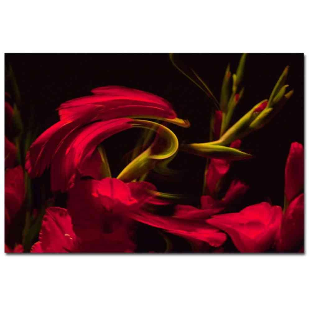 24 in. x 16 in. Gladiolus III Canvas Art