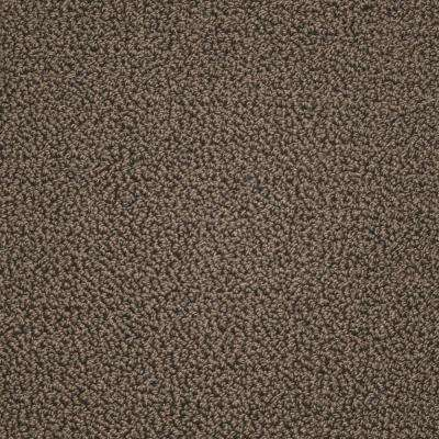 Carpet Sample - Tranquility - Color Cocoa Powder Texture 8 in. x 8 in.