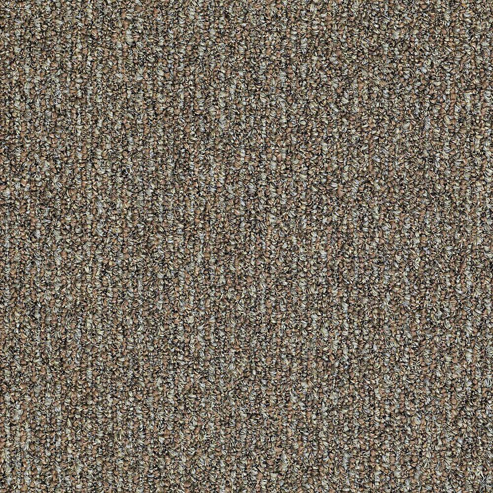 Carpet Sample - Fallbrook - In Color Beechnut 8 in. x