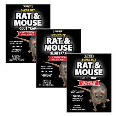 Rat and Mouse Glue Trap Super-Size with Lure (3-Pack)