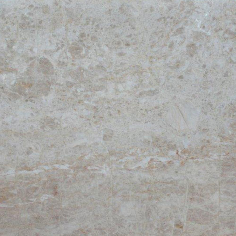 3 in. x 3 in. Quartzite Countertop Sample in New Elegance Quartzite