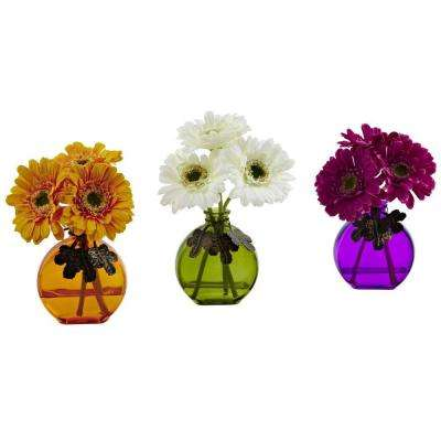 Gerber Daisy with Colored Vase (Set of 3)