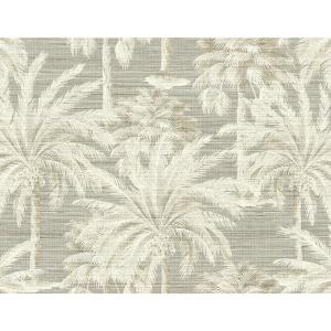 Dream Of Palm Trees Grey Texture Wallpaper