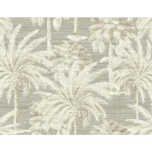 Dream Of Palm Trees Grey Texture Grey Paper Strippable Roll (Covers 60.8 sq. ft.)