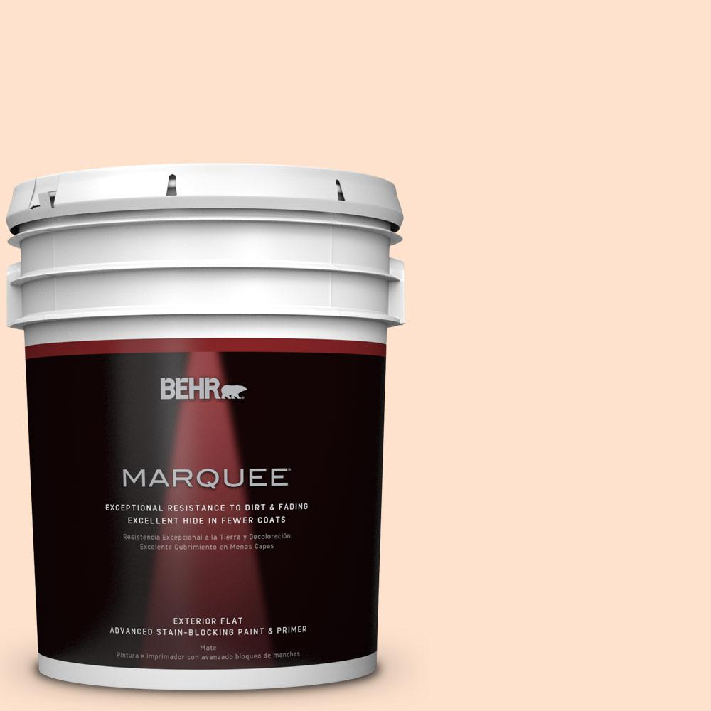 5-gal. #P200-1 Melted Marshmallow Flat Exterior Paint