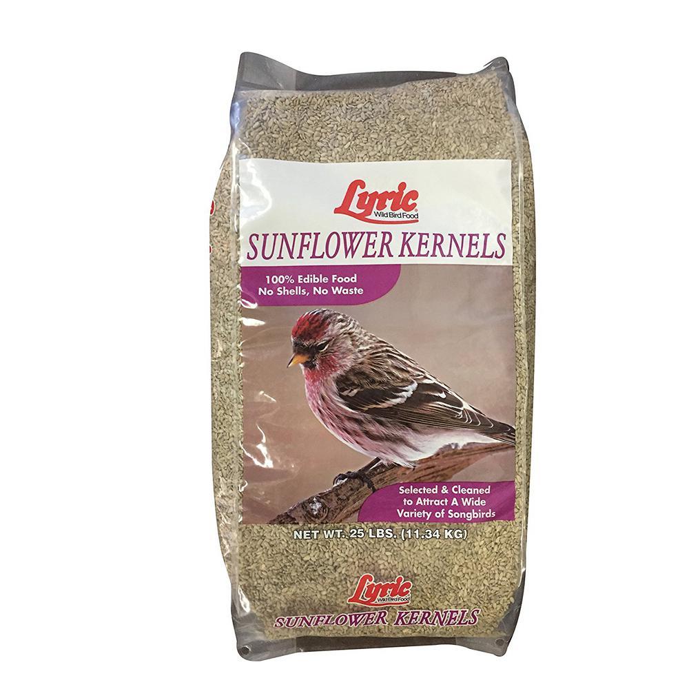 Lyric 25 lb. Sunflower Kernels by Lyric