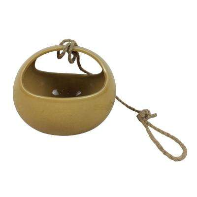 7 in. Honey Cosette Ceramic Hanging Planter