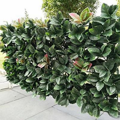 GorgeousHome Artificial Boxwood Hedge Greenery Panels EuropeanHolly 20 in. x 20 in. (6-Piece)