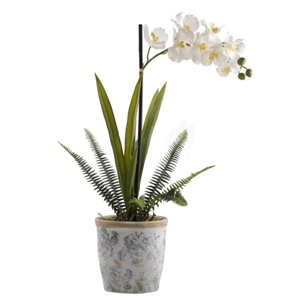 D&W Silks Indoor Cream Vanda Orchid in Blue and White Ceramic